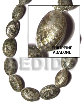 Cebu philippine abalone whole shell beads