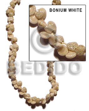 Teens bonium white whole shell beads