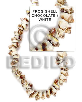 Natural frog shell chocolate white whole shell beads